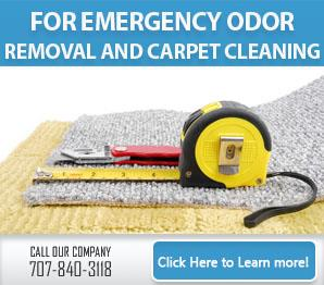 Residential Tile Cleaning - Carpet Cleaning Vallejo, CA